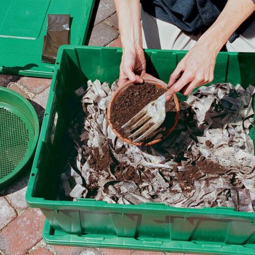 potting soil added to bin