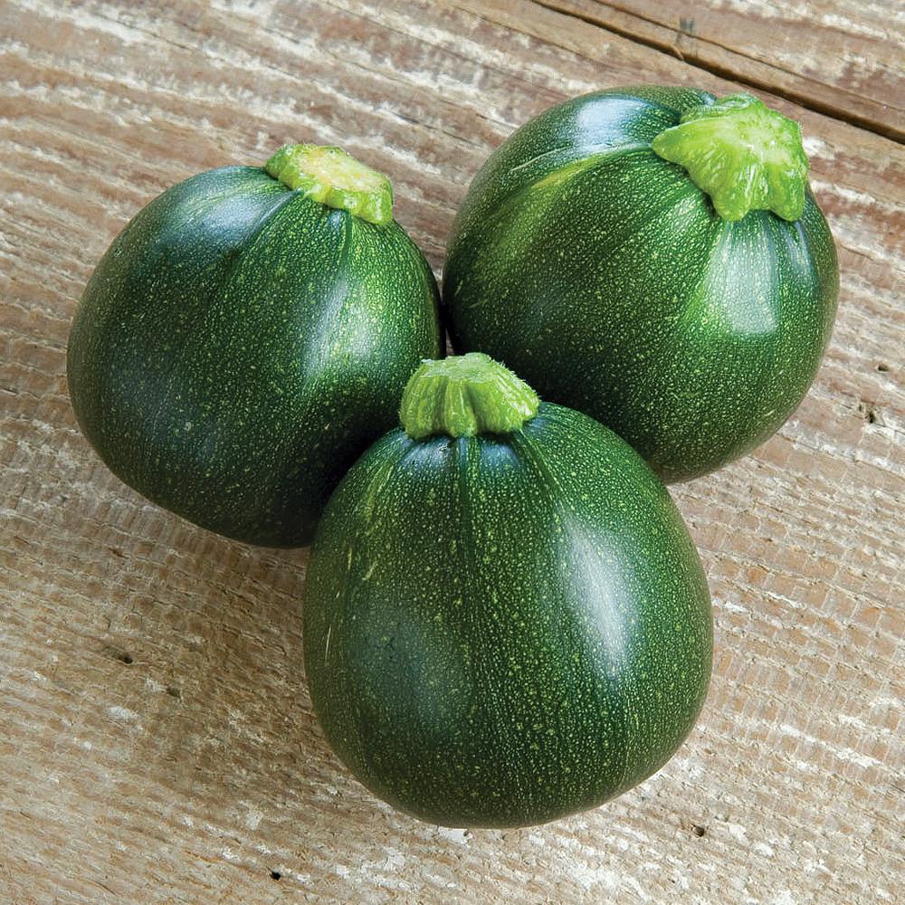 Eight Ball zucchini