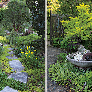 design hardscape and plants