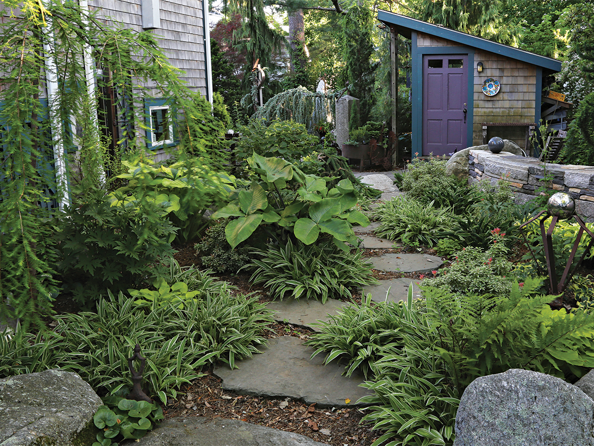natural looking garden path