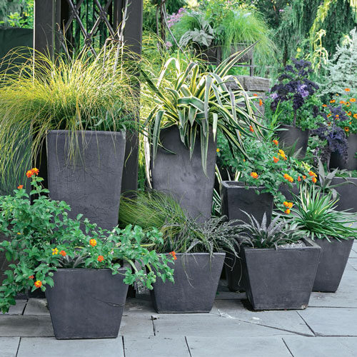 8 ways to add containers to your landscape