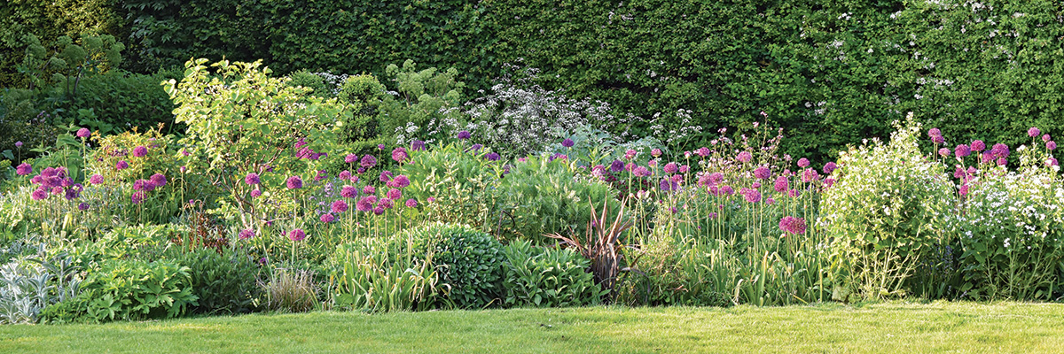 long garden bed with soft-hued flowers