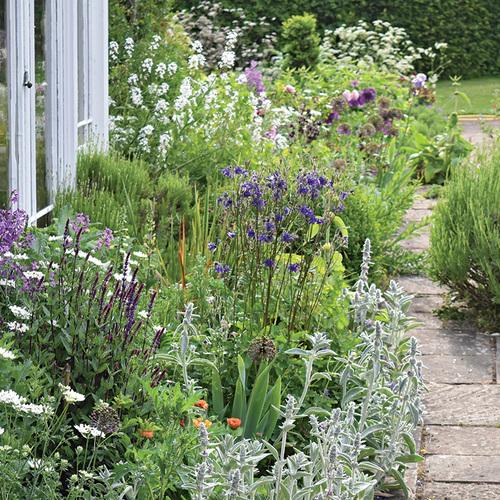 english country garden in summer