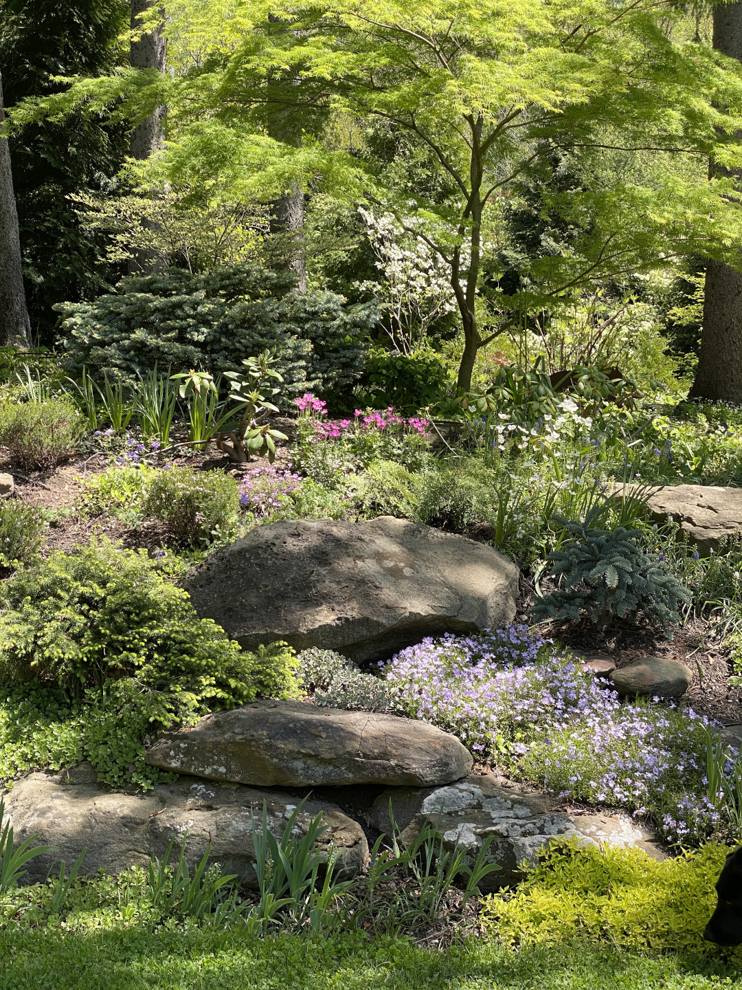 A garden with several large rocks scattered through it