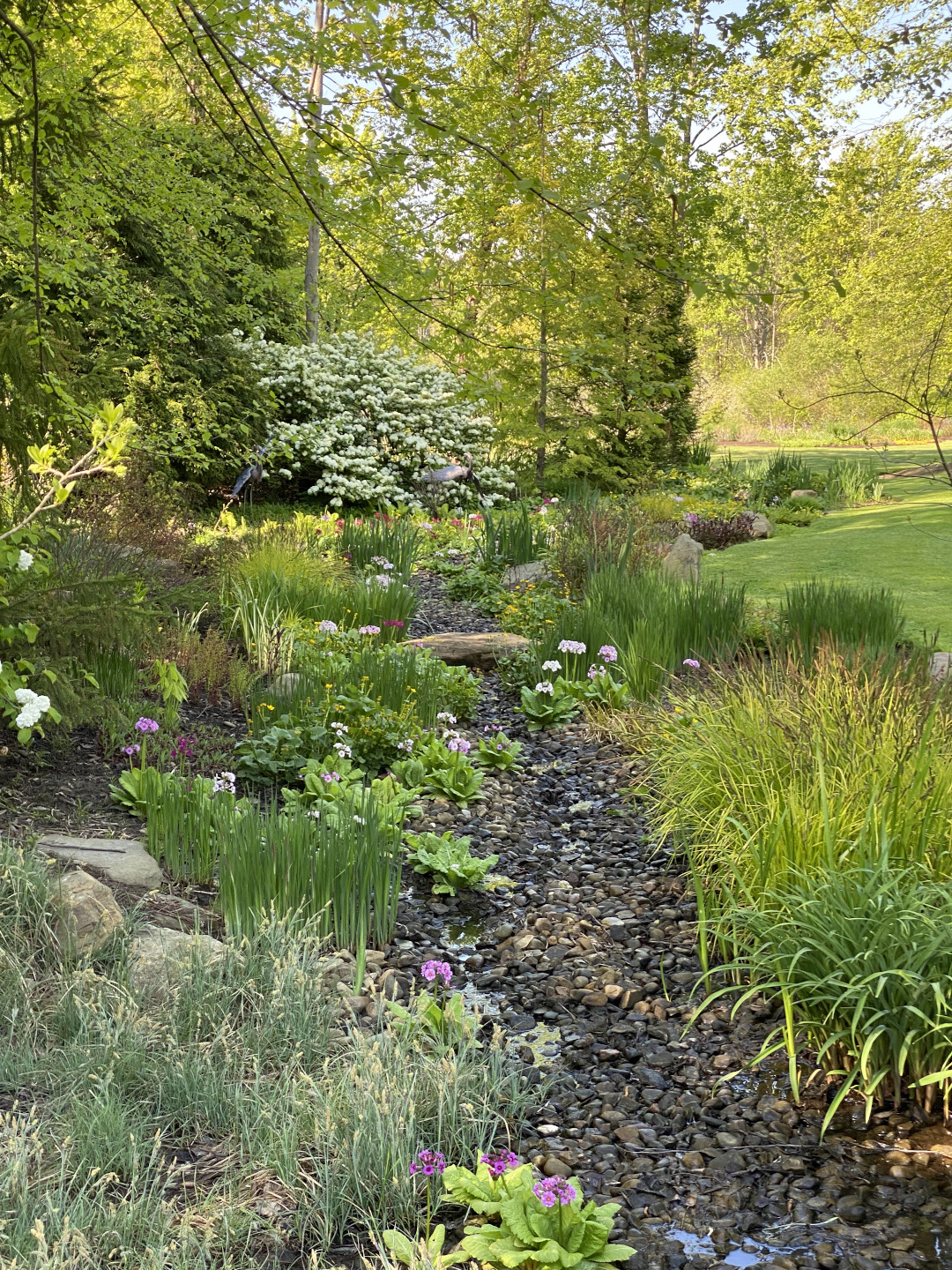 Garden view with lawn on the right and dry stream bed to the left