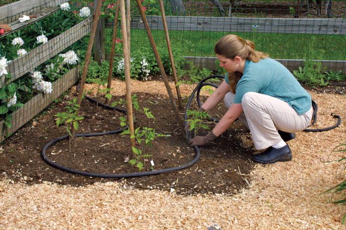 2 Smart Ways to Water Your Garden