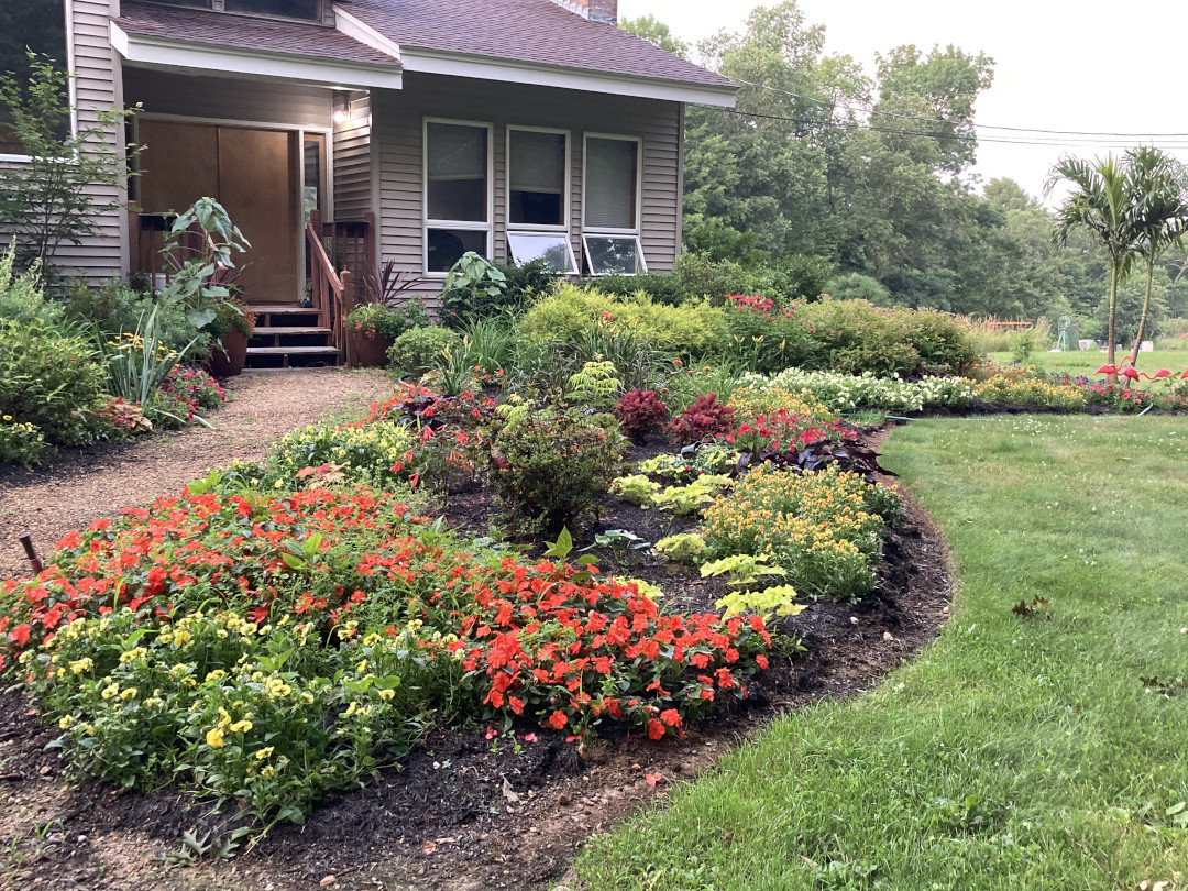 front yard garden bed with red and yellow plants