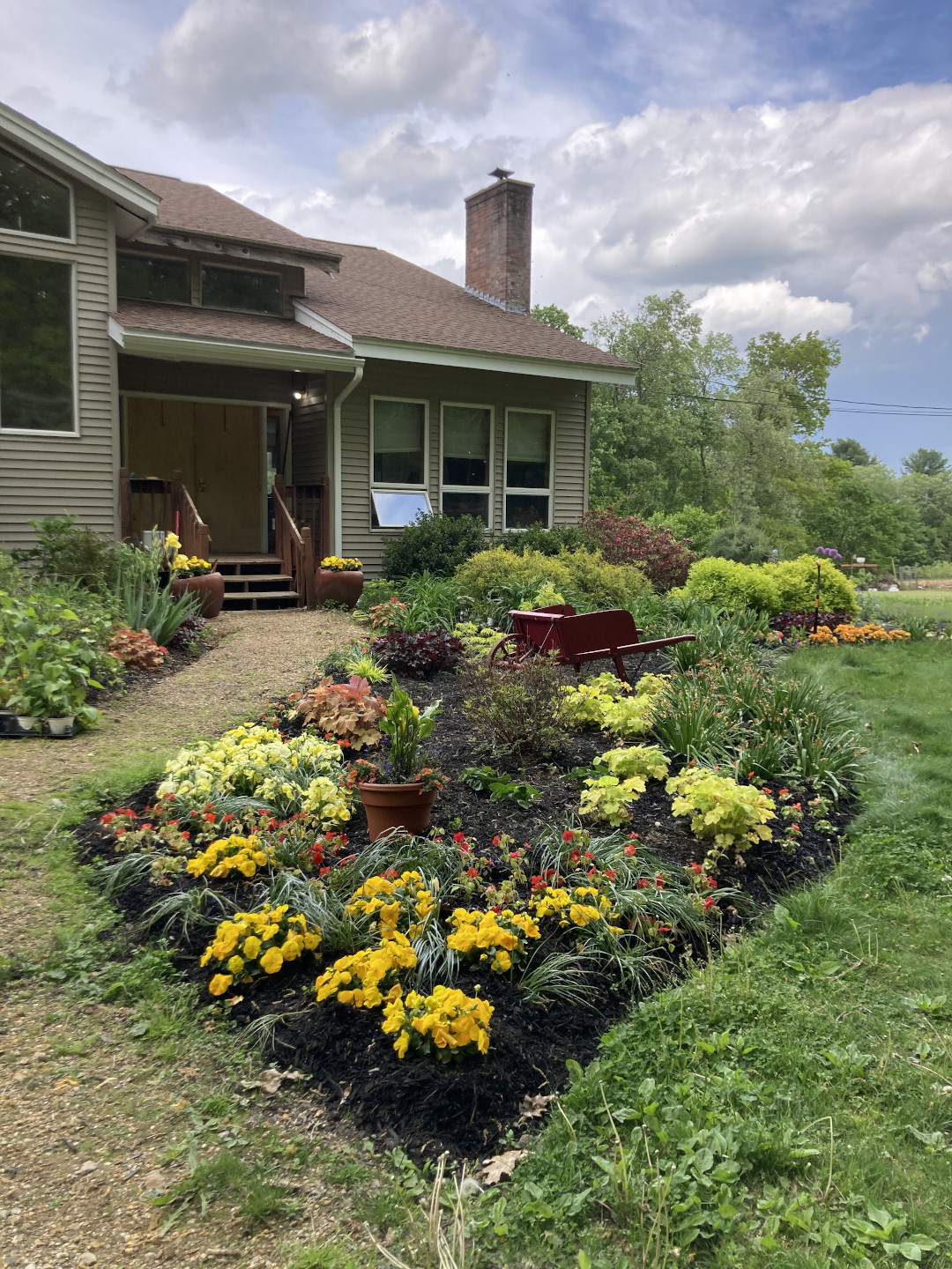Garden bed with lots of red and yellow