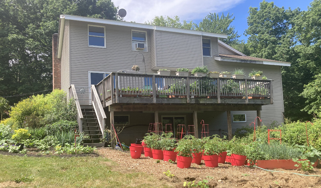 many plants grow on and under a raised deck