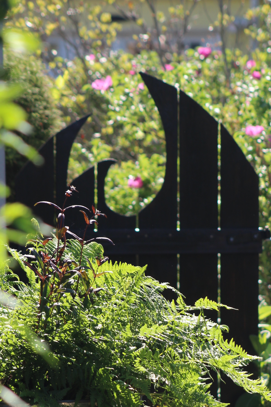 fern growing in front of uniquely shaped garden gate