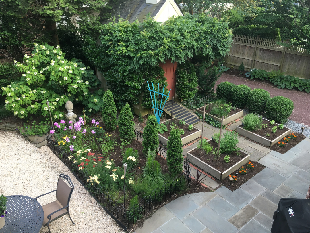 raised beds next to a fenced garden bed