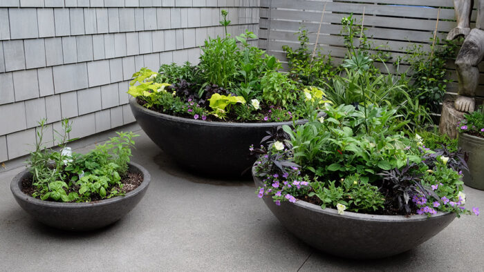 Ditch Pre-Potted Nursery Containers for Your Own Creations