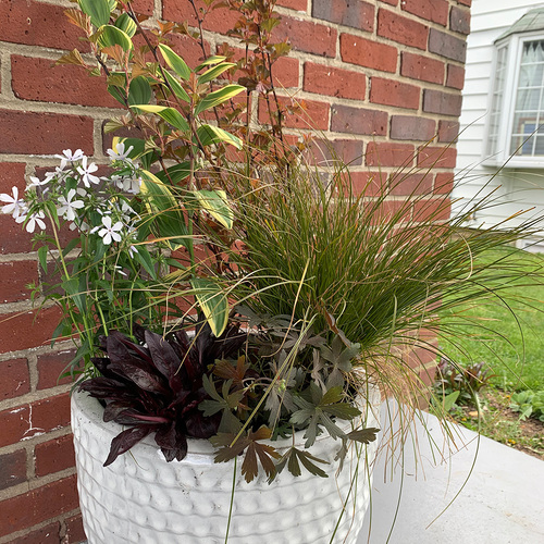 shade container with bronze color theme