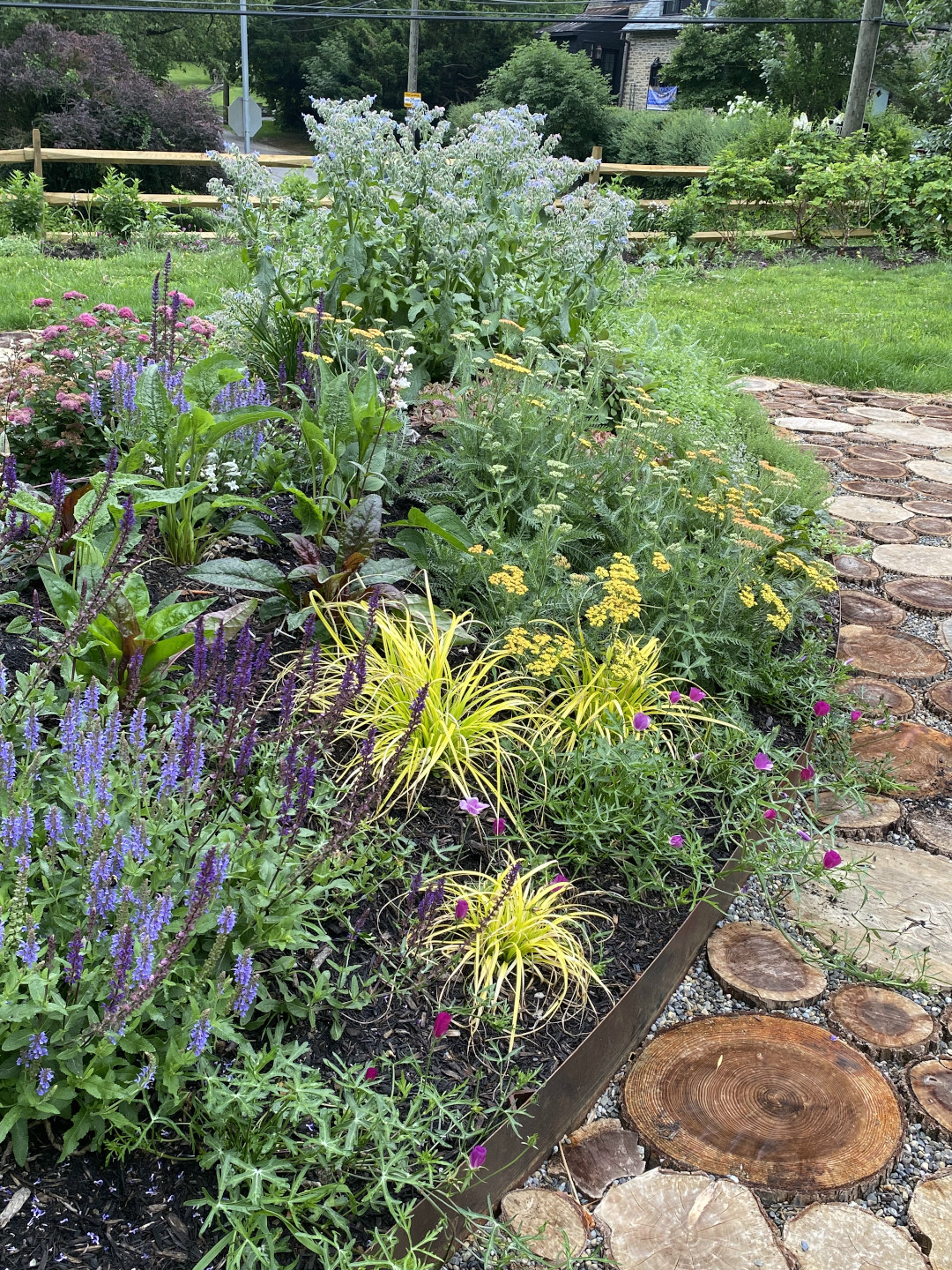 Mounded garden with flowering plants growing on it