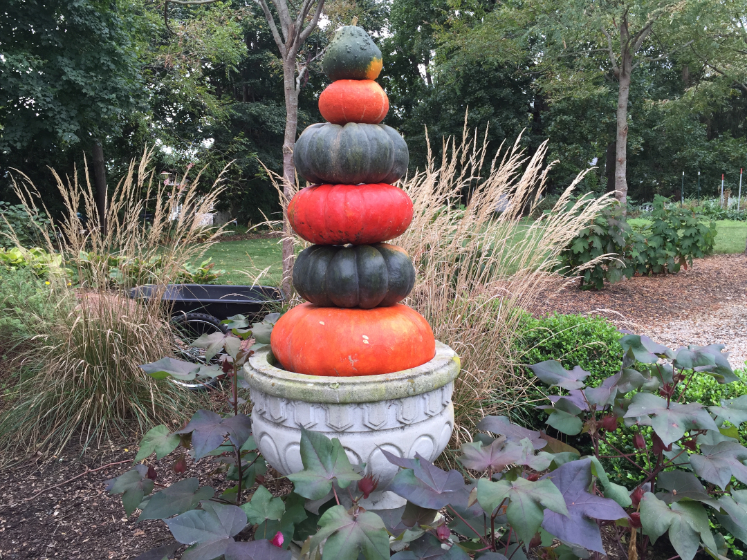 A grey urn with a stack of orange and black squash in it