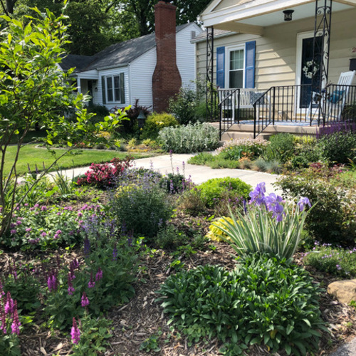 front yard garden bed with a small tree
