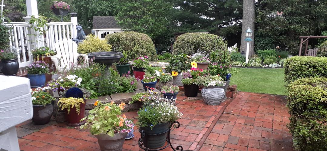Many pots of plants on a brick patio