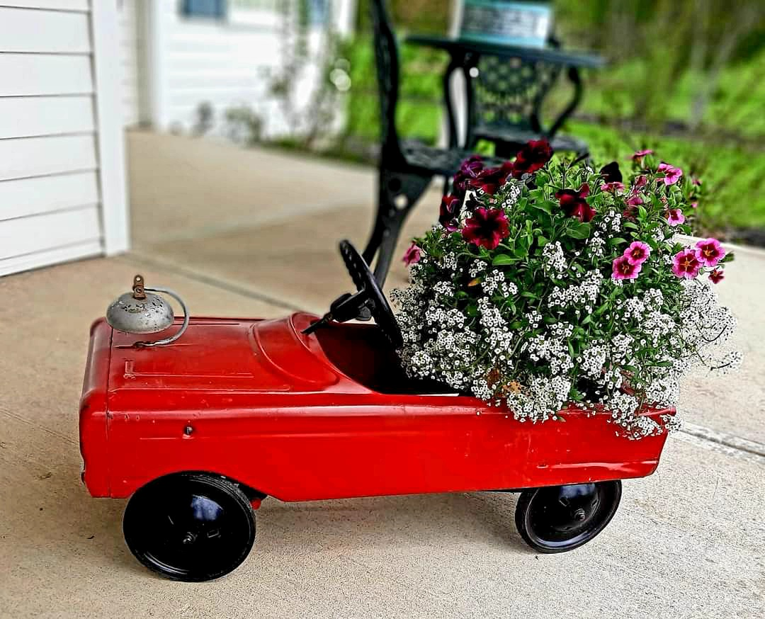 annuals in a quirky car container