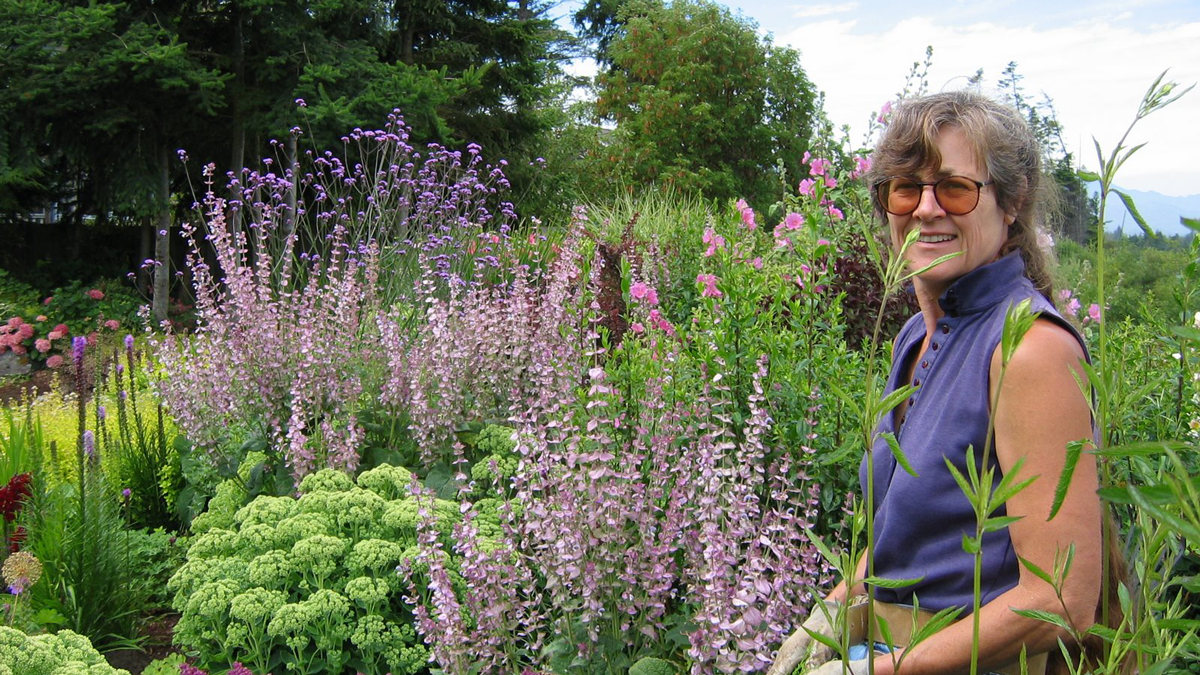 The landscape was planned, planted, and maintained by garden designer Sharon Nyenhuis whose work has been featured in the pages of Fine Gardening numerous times. Sharon's challenge for this particular garden was designing it to have ONE peak. Now, that might seem like a bad idea. But designing for one peak doesn't mean that the landscape only looks good in one season—it just means you choose plants that put on their best show during the same 6 to 8 week period of time.