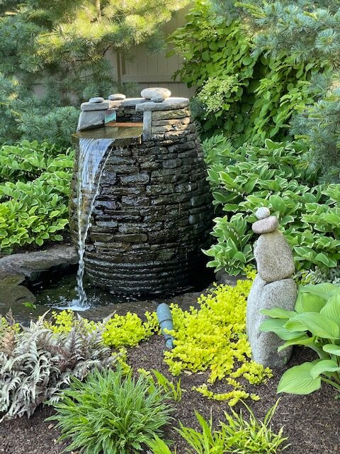 garden water feature surrounded by green plants