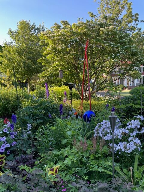 garden bed with summer blooms