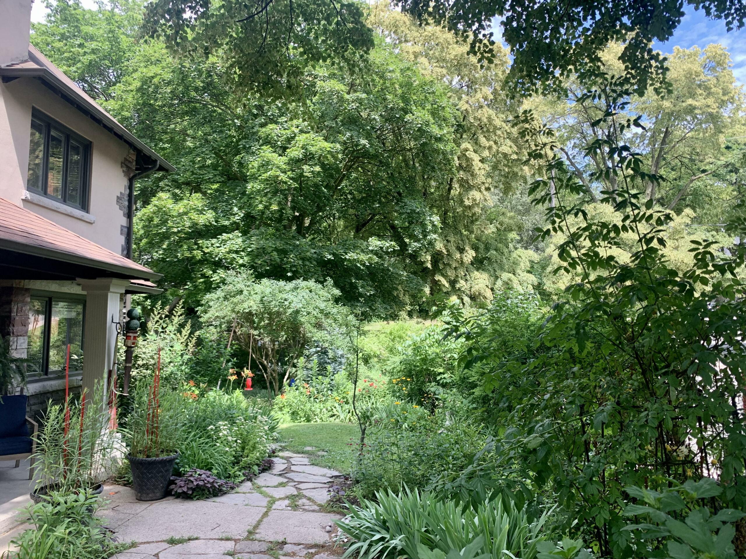 side garden full of greenery