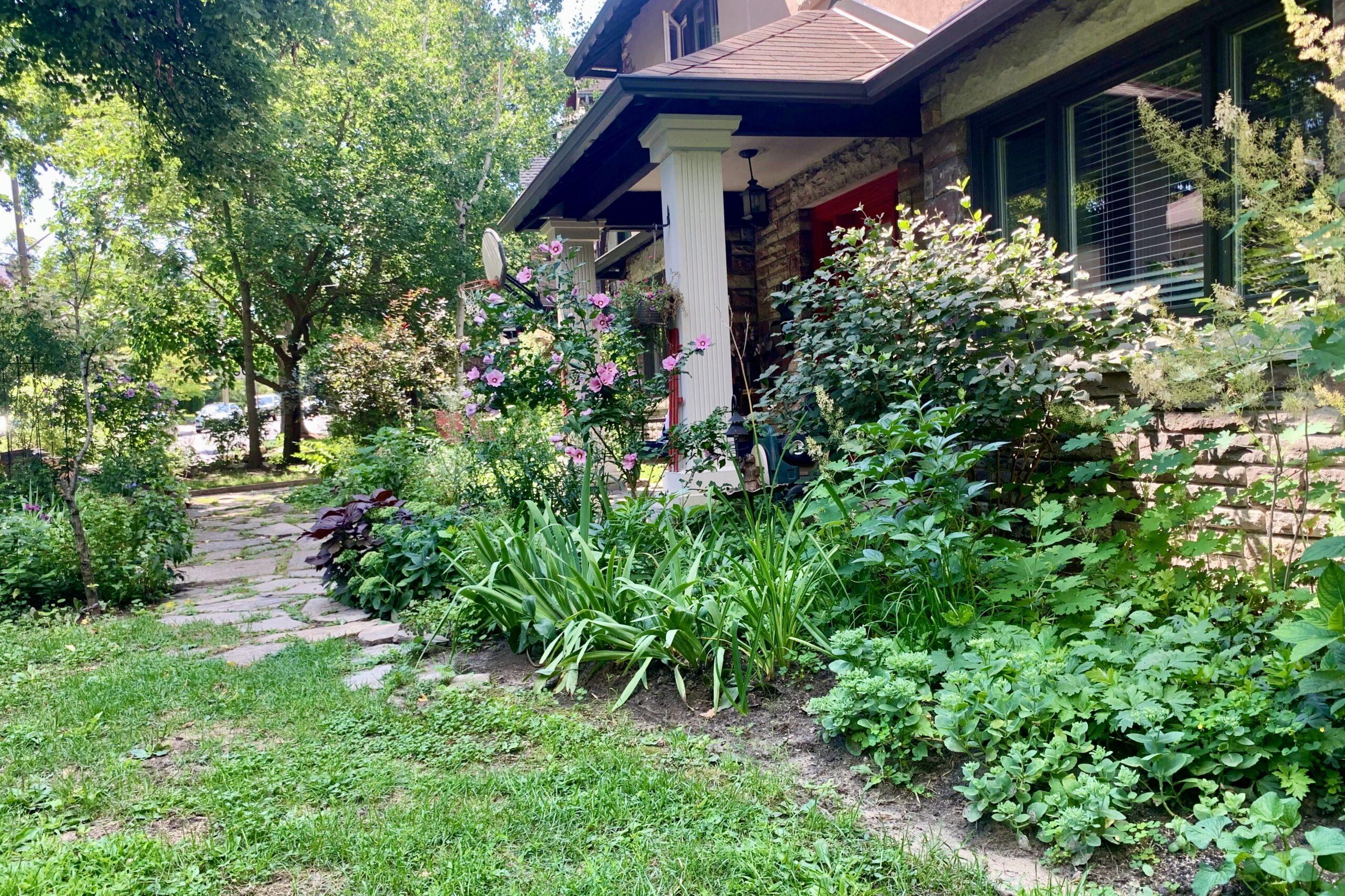 garden along the front of a home