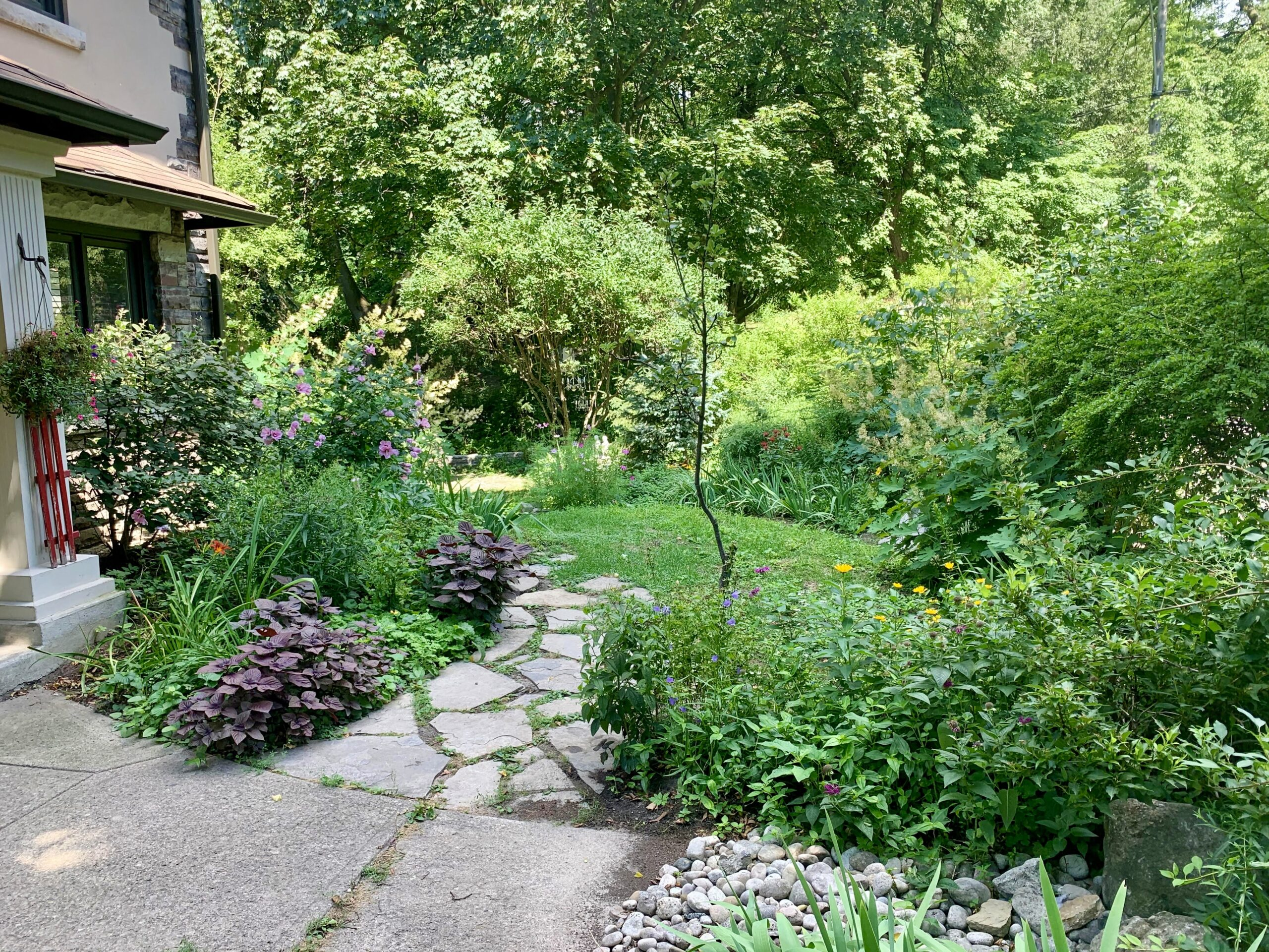 garden and path leading to side of home
