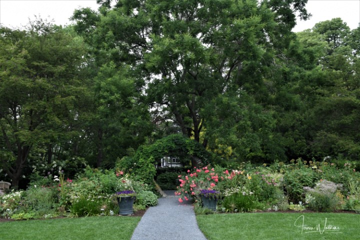 walkway flanked by two perennial borders