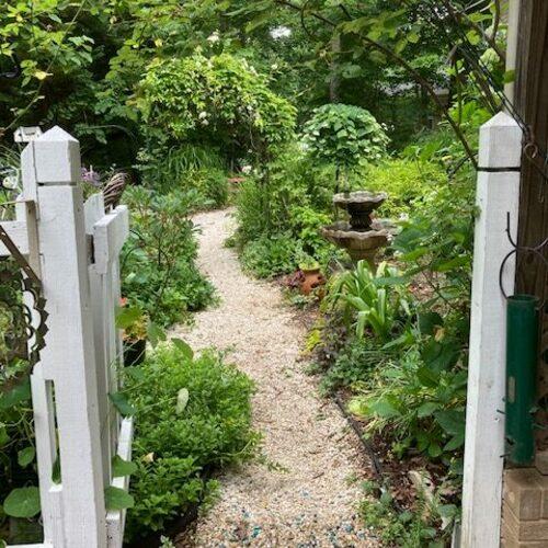 view of garden through fence gate