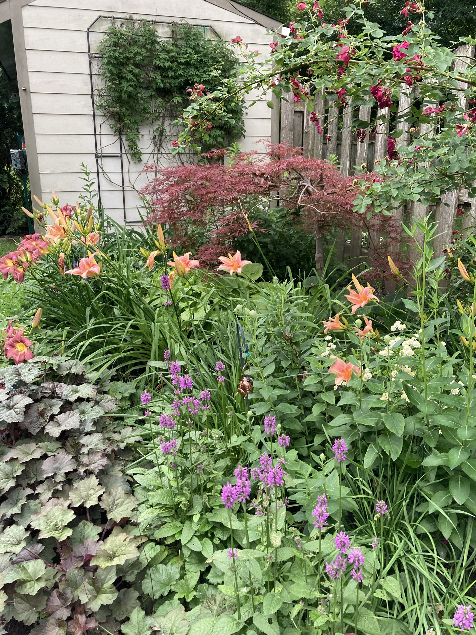 Garden bed leaning against a wooden fence