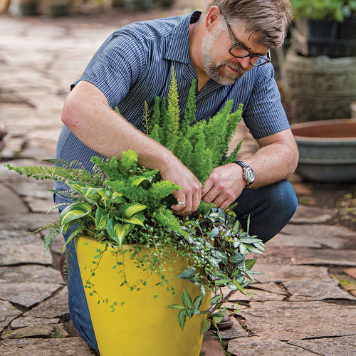 man trimming shade container
