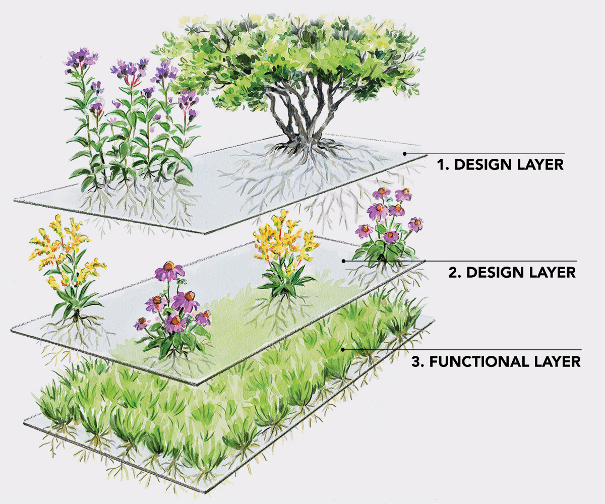 illustration of the different planting layers separated