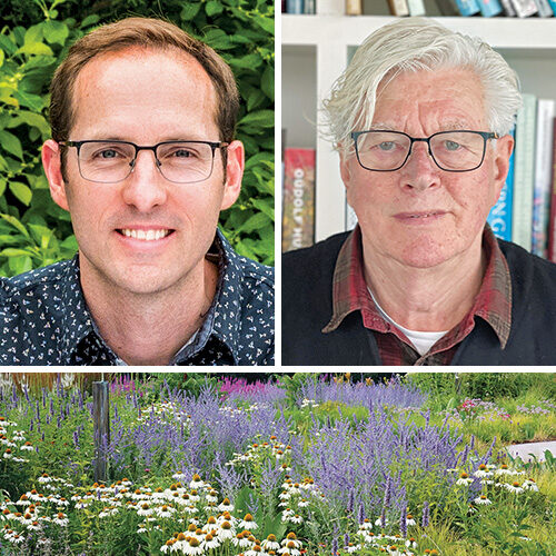 experts on naturalistic gardens