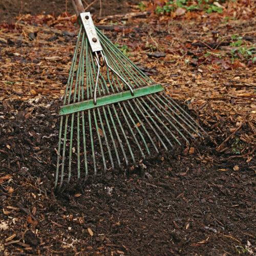 Raking dirt and leaves