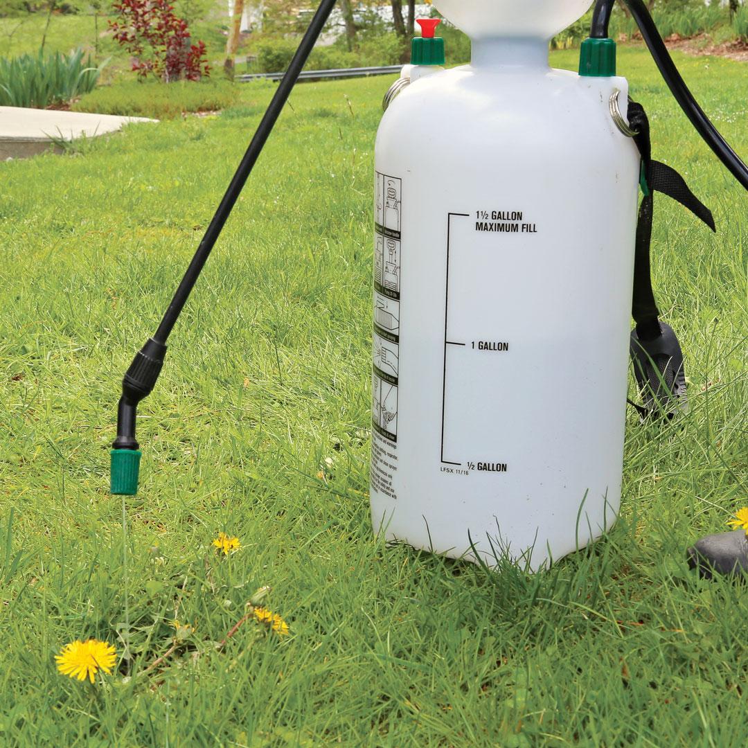 garden pump sprayer in a lawn
