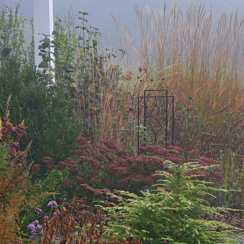 gardening with challenging conditions