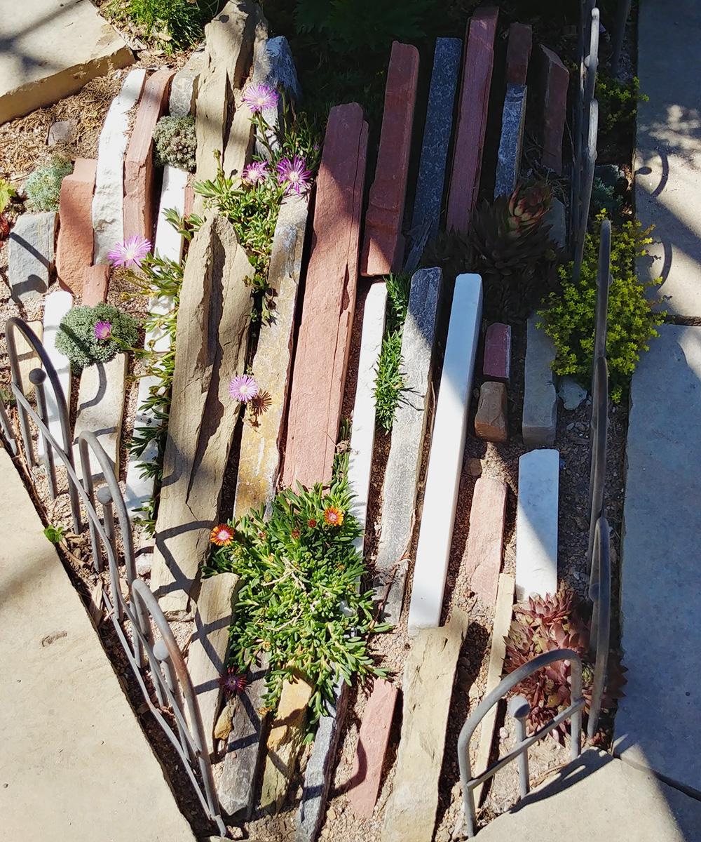 Mini Crevice Garden