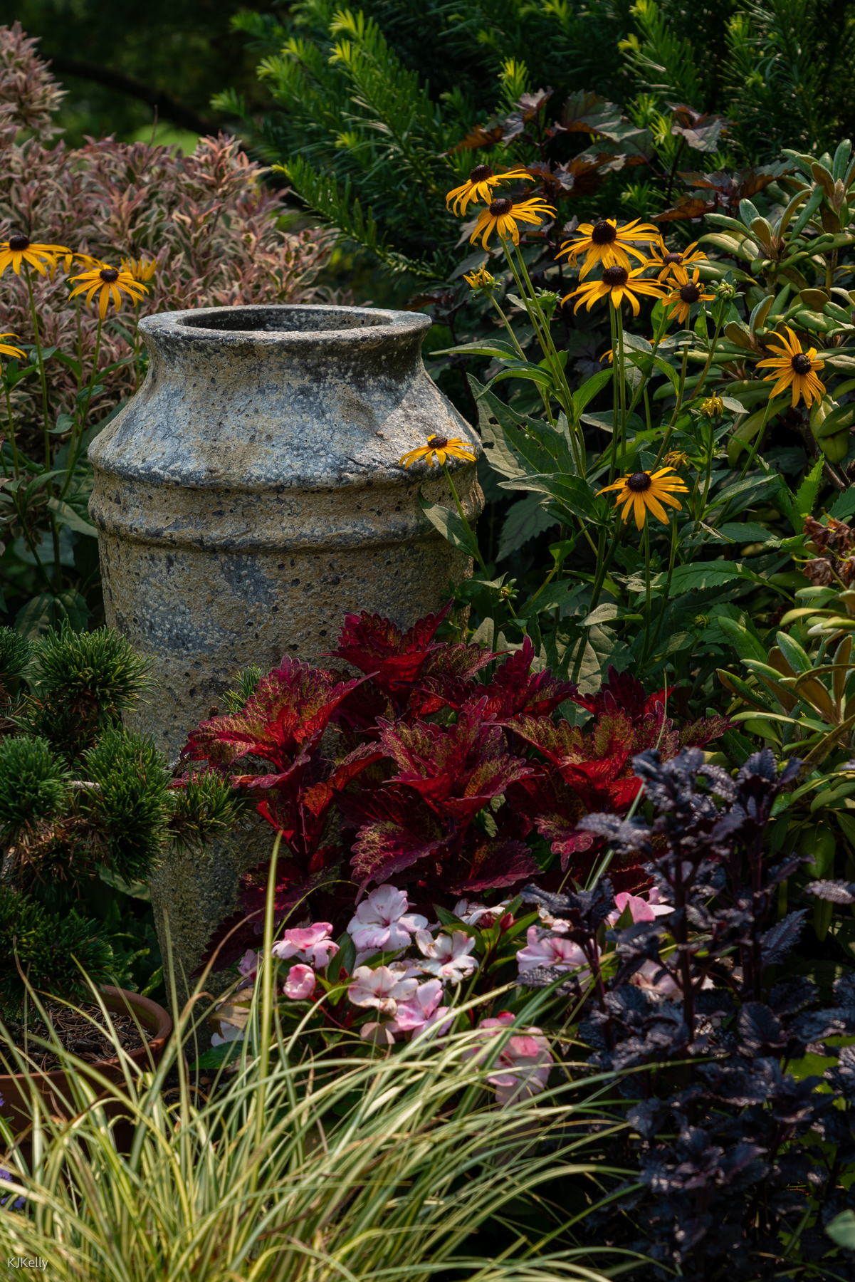 Cone flowers and foliage plants next to large containers