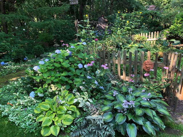 garden bed in front of fence