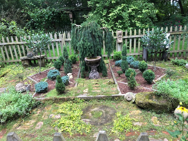 garden bed with lots of evergreens