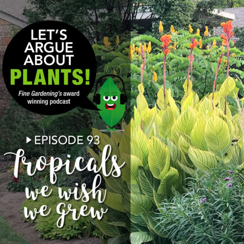 Episode 93: Tropicals We Wish We Grew