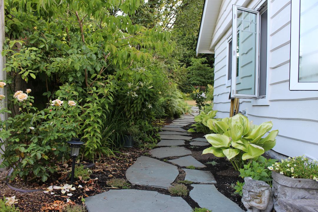 stone path down side yard