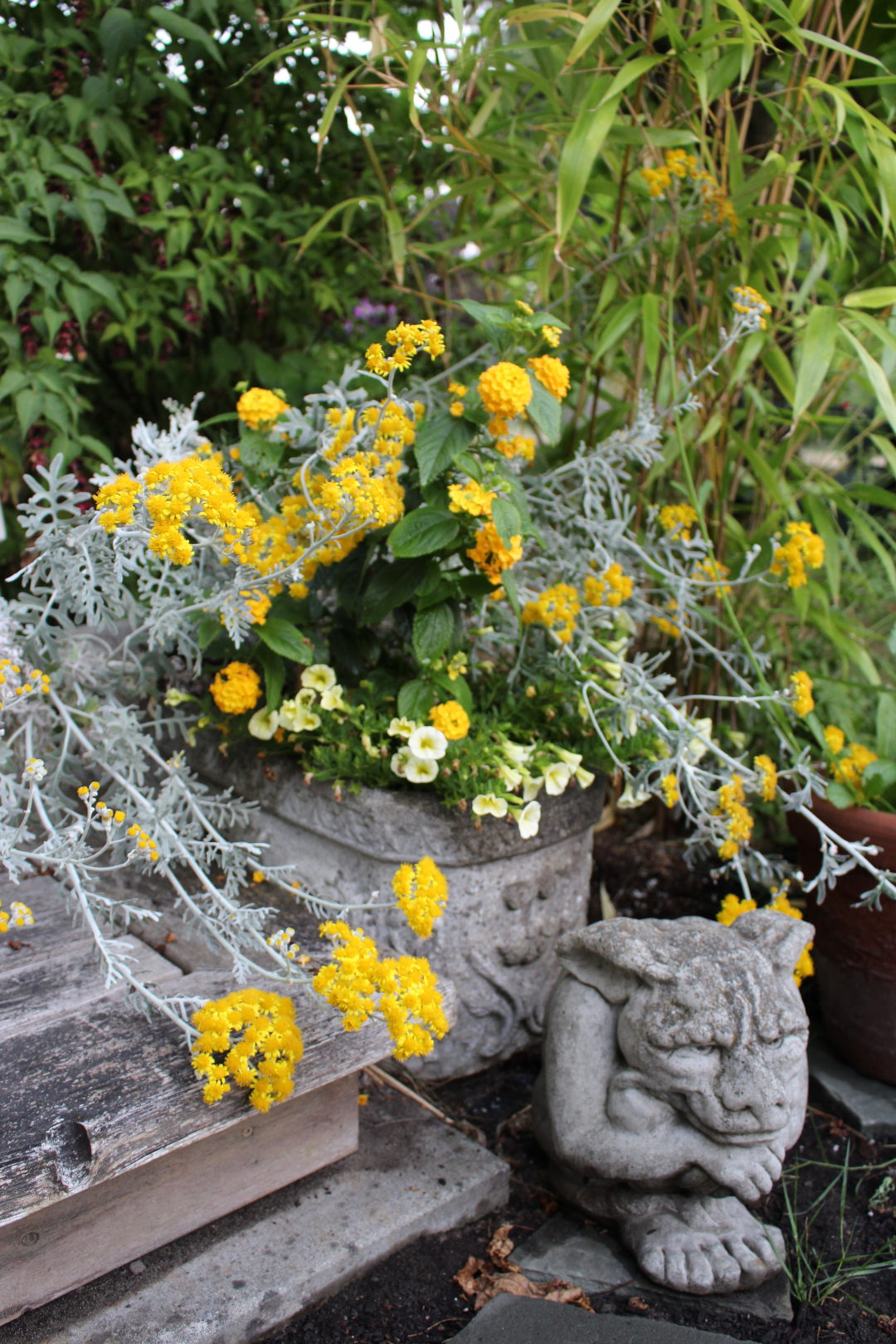 gargoyle statue next to yellow plant in a container