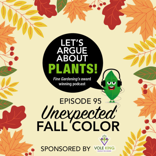 Podcast 95: Unexpected Fall Color