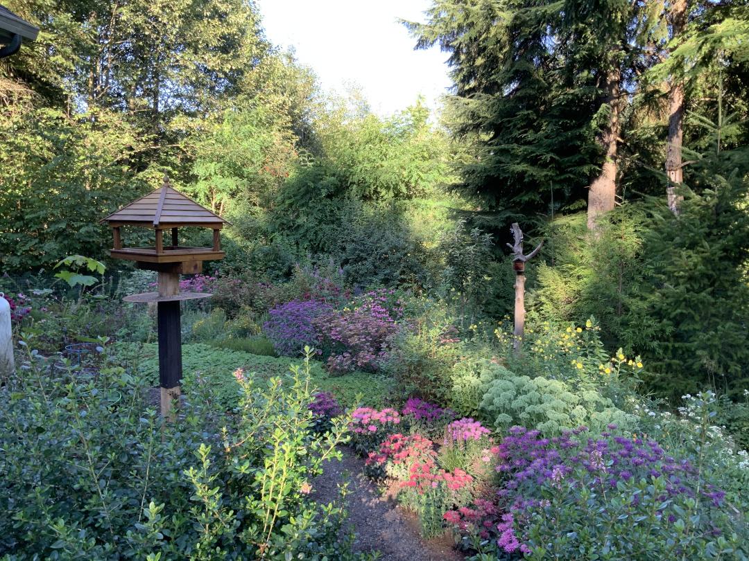 bird feeder in a pollinator-friendly garden