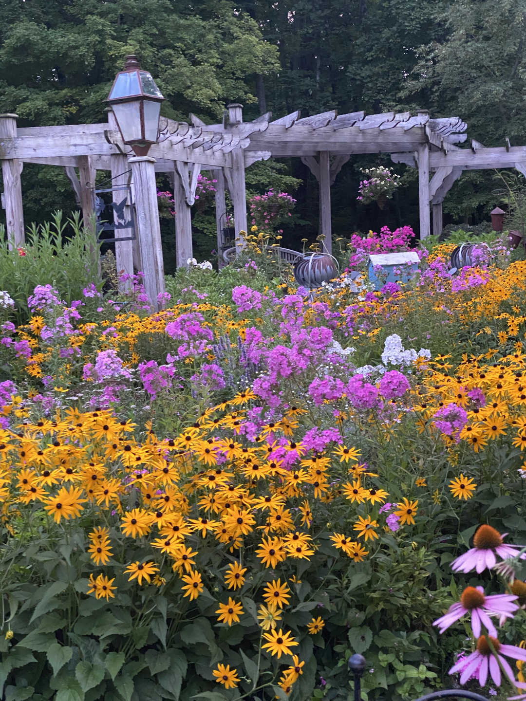 pink and yellow flowers in front of garden pergolas
