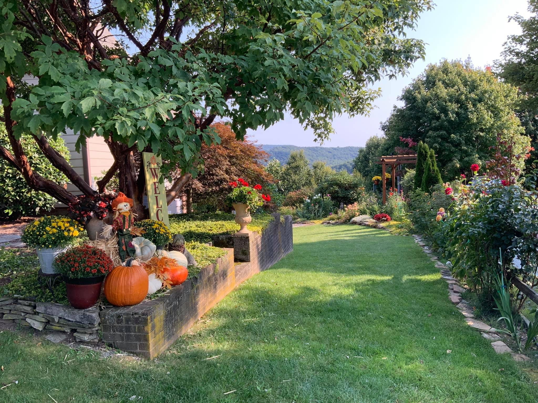 garden in fall with mums and pumpkin
