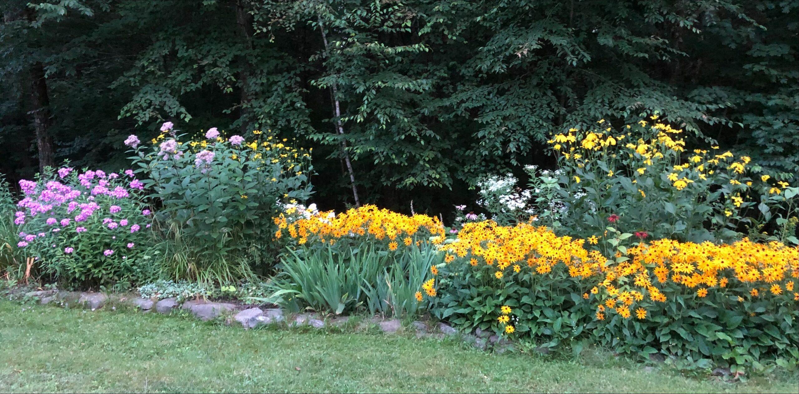 garden bed in full bloom