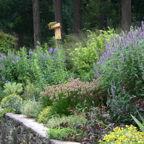 sunny garden bed full of flowers above stone wall